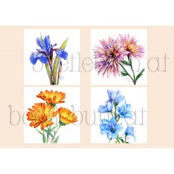 Mini-Prints Geburtsblumen